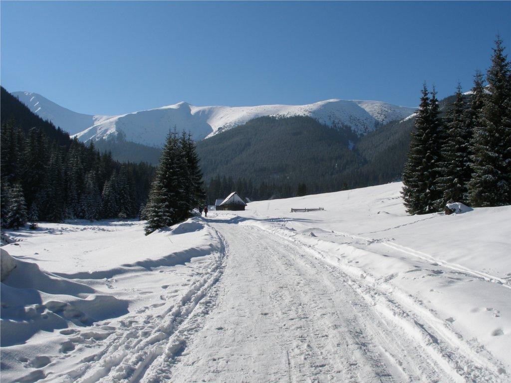 Zakopane Zimą Co Można Robić W Zakopanem Zimową Porą