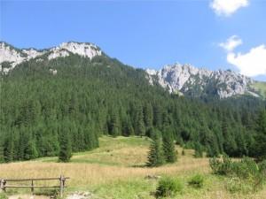Kościeliska Valley