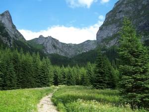 Podejście na Przełęcz Kondracką