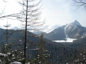 widok ze szczytu Boczań